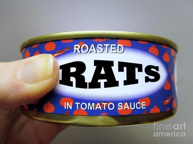 roasted-rats-in-tomato-sauce-renee-trenholm